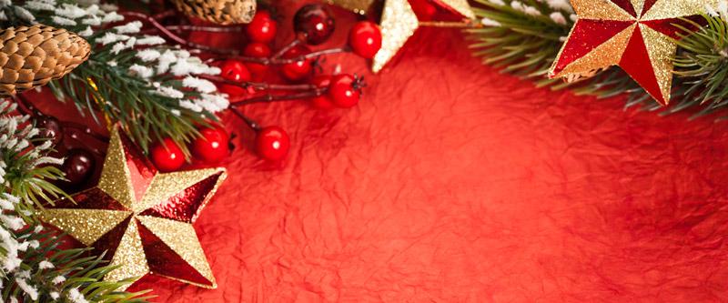 Christmas (Holly)